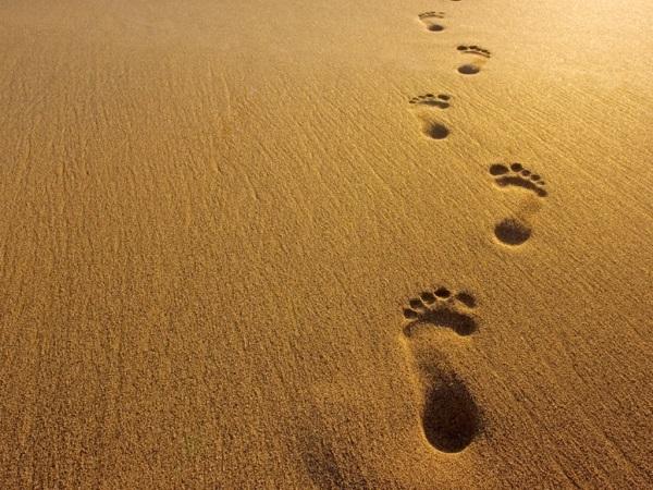 footstepsinsand