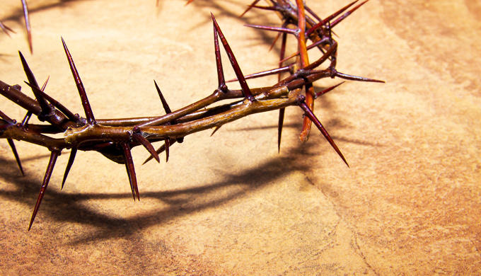 The one they pierced (Zechariah12:10-14)